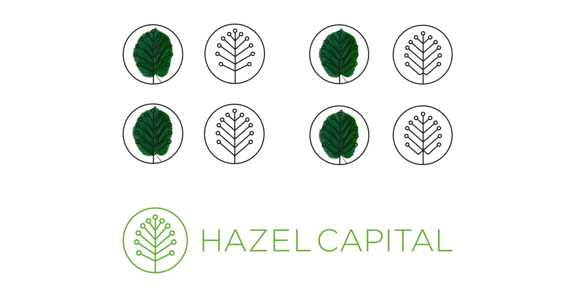 Hazel Capital logo